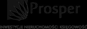 Prosper-ink.pl